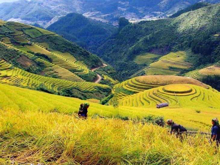 sapa-tour-vietnam-2014